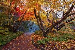 Fall Shades of Color….Nature Inspired